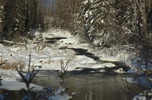 Around Snow Lake